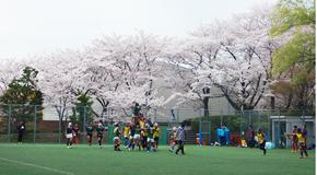 『OIUラグビー桜フェスタ』の開催